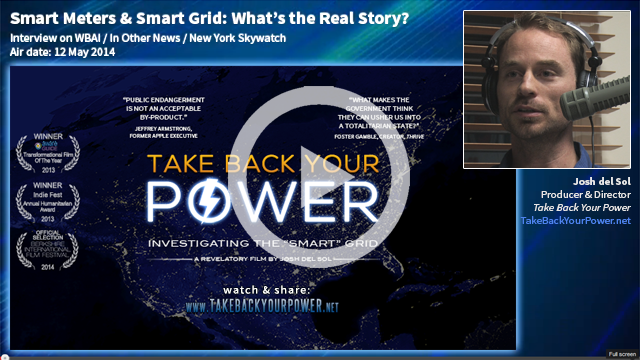 whats the buzz on smart grids Case study: what's the buzz on smart grids 1 how do smart grids differ from the current electricity infrastructure in the united states smart grids are different from the existing infrastructure in the united states because it is.