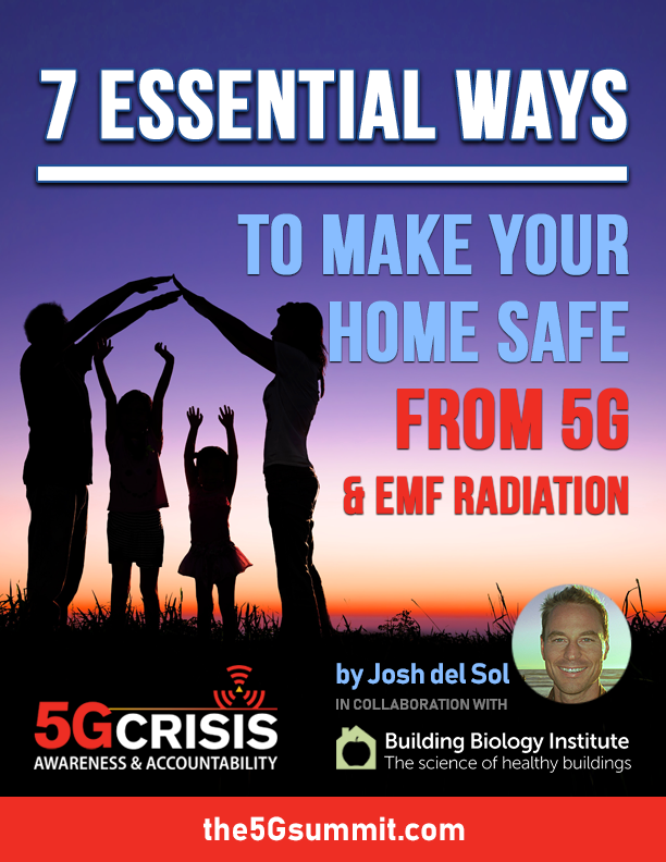 7 Essential Ways to Make Your Home Safe From 5G and EMF Radiation